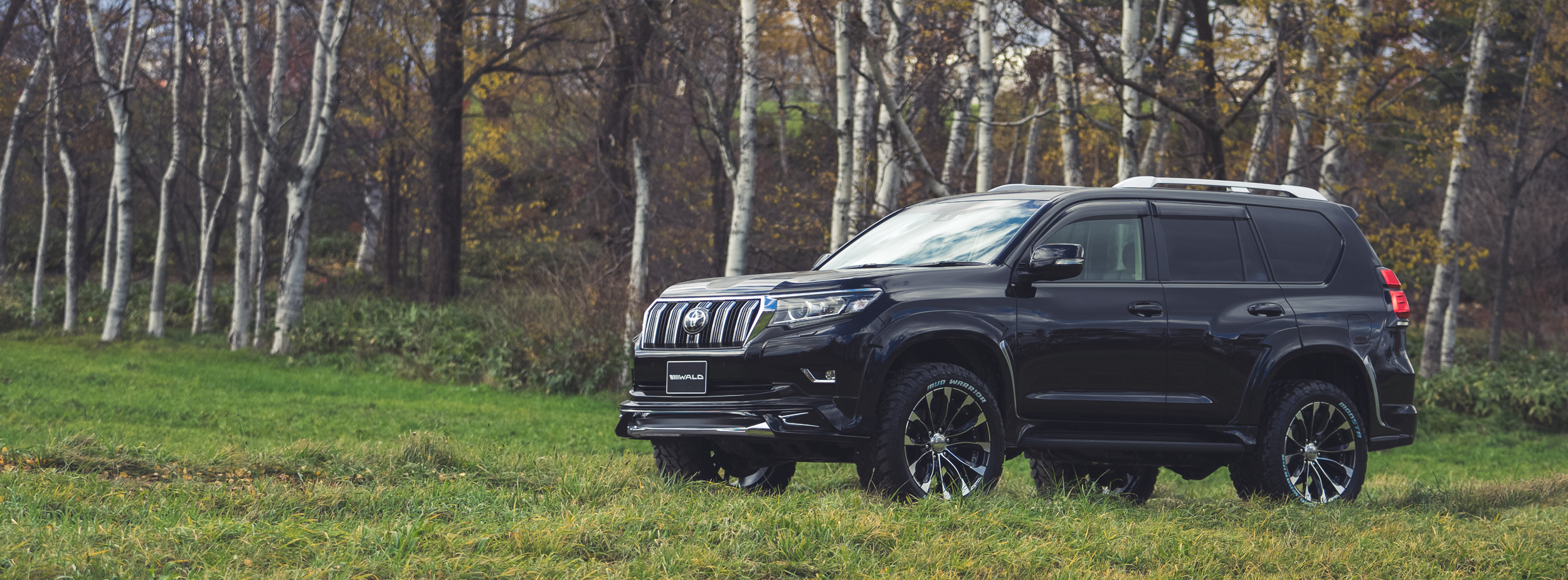 TOYOTA LAND CRUISER PRADO WALD SPORTS LINE
